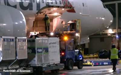 History: American Airlines Workers Launch Vaccine Shipments From ORD to MIA